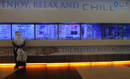 A P Erby Looks Into The Chillout Cafe In Dubai