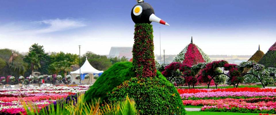 Dubai s miracle garden opens with 45 million flowers for Garden design dubai