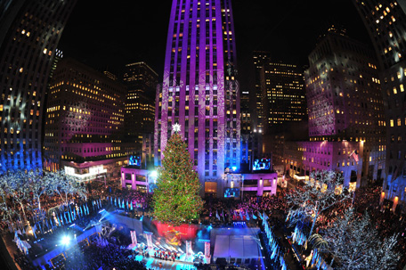 christmas trees go up in new york