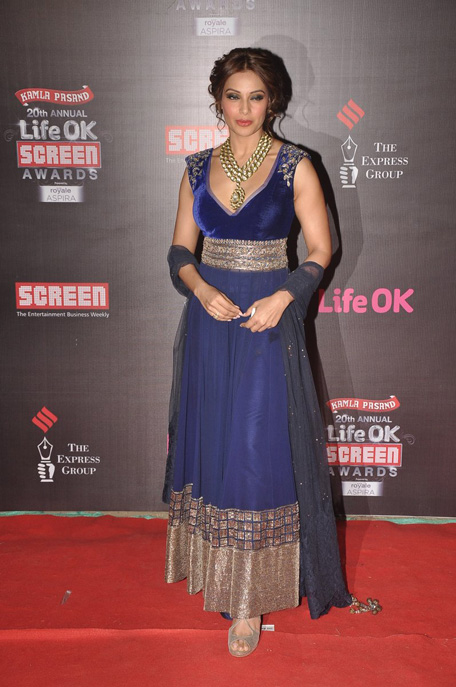 Bollywood red carpet dresses 2014 re re