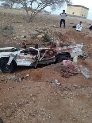 8 Killed In Saudi Car Camel Crash Emirates 24 7